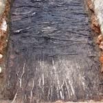 Badania archeologiczne w 2008 r. Warstwa umacniającego podłoże gruzu ceglanego